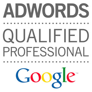 Adwords-qualified-professional