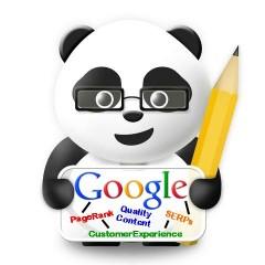 Google Panda - пак на училище
