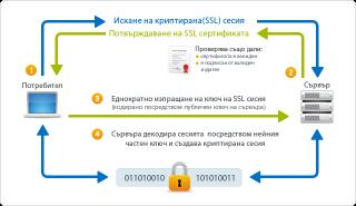 Как работи и какво представлява SSL сертификата?